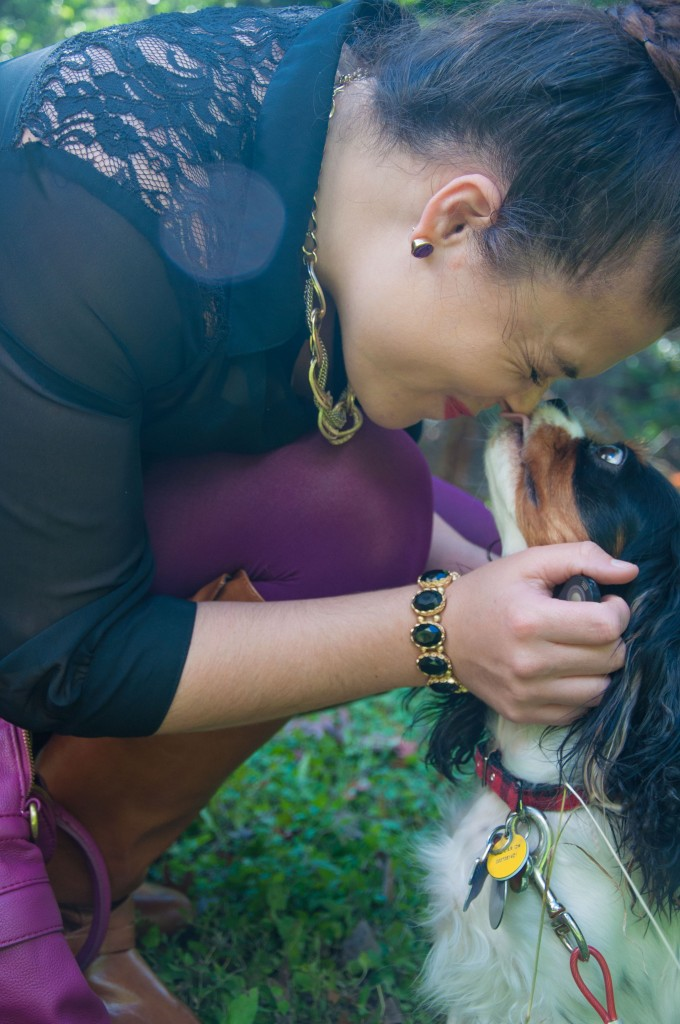 Cavalier King Charles Spaniel: Puppy Love