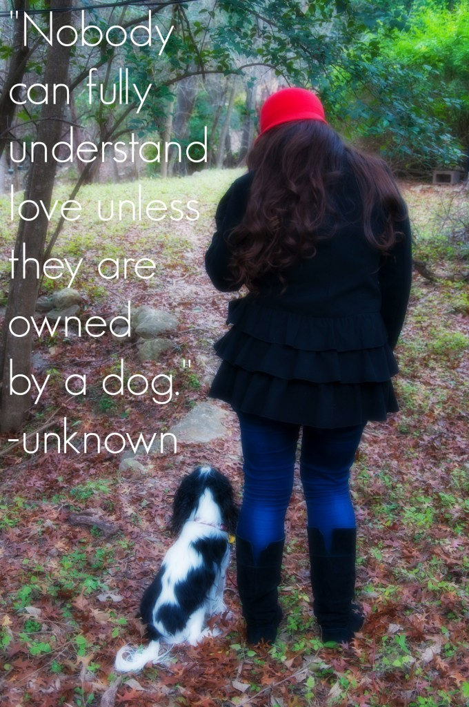 Unless they are owned by a dog