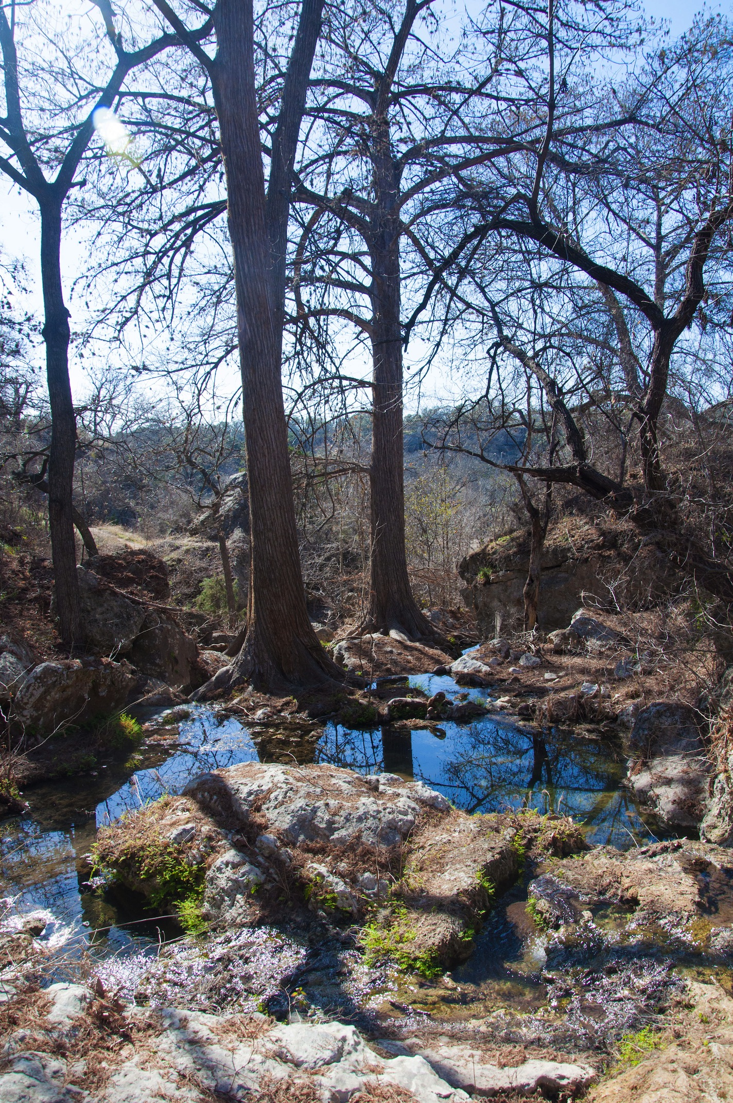 Hiking in Dripping Springs, TX