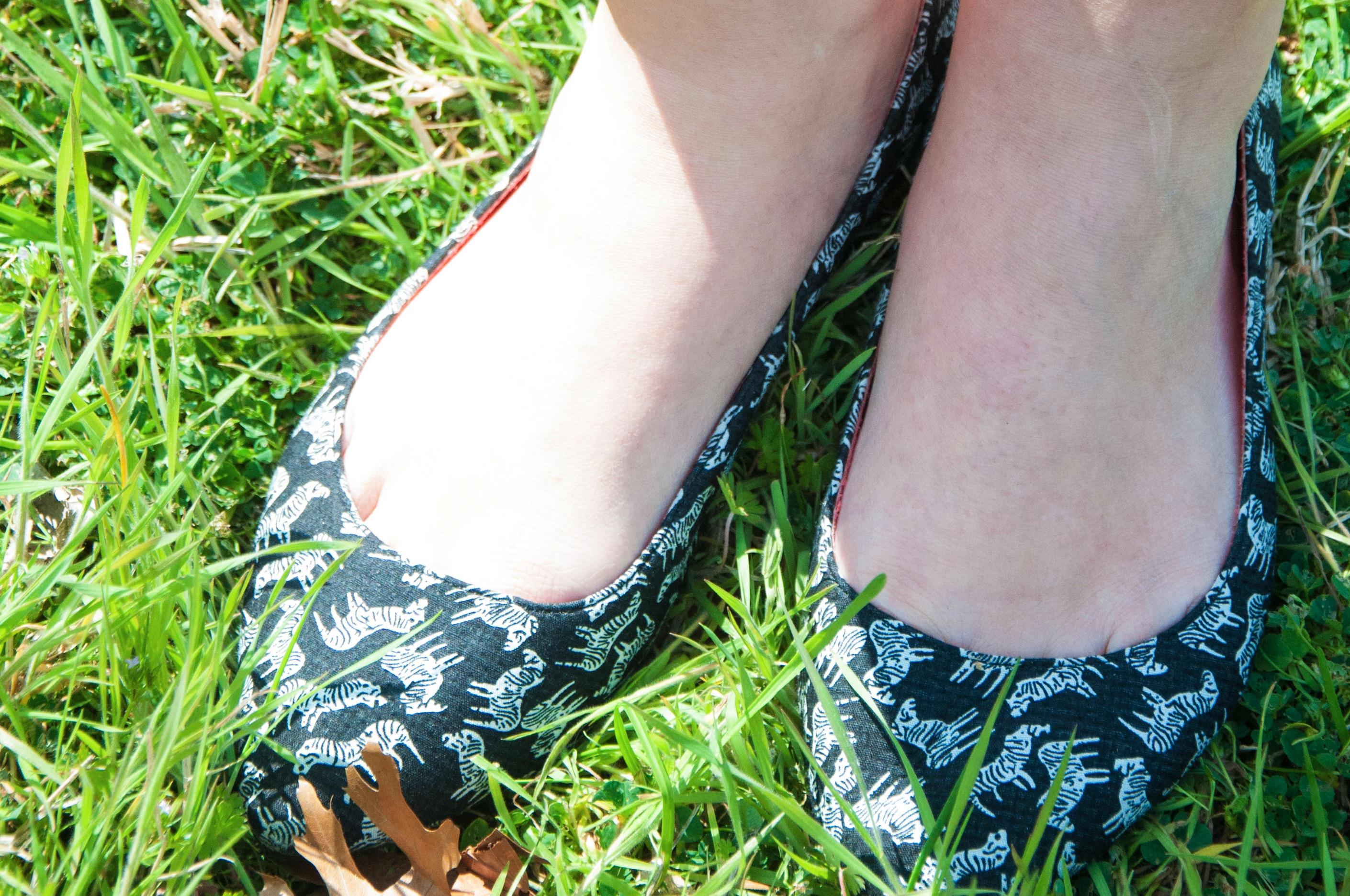 Zebra Shoes
